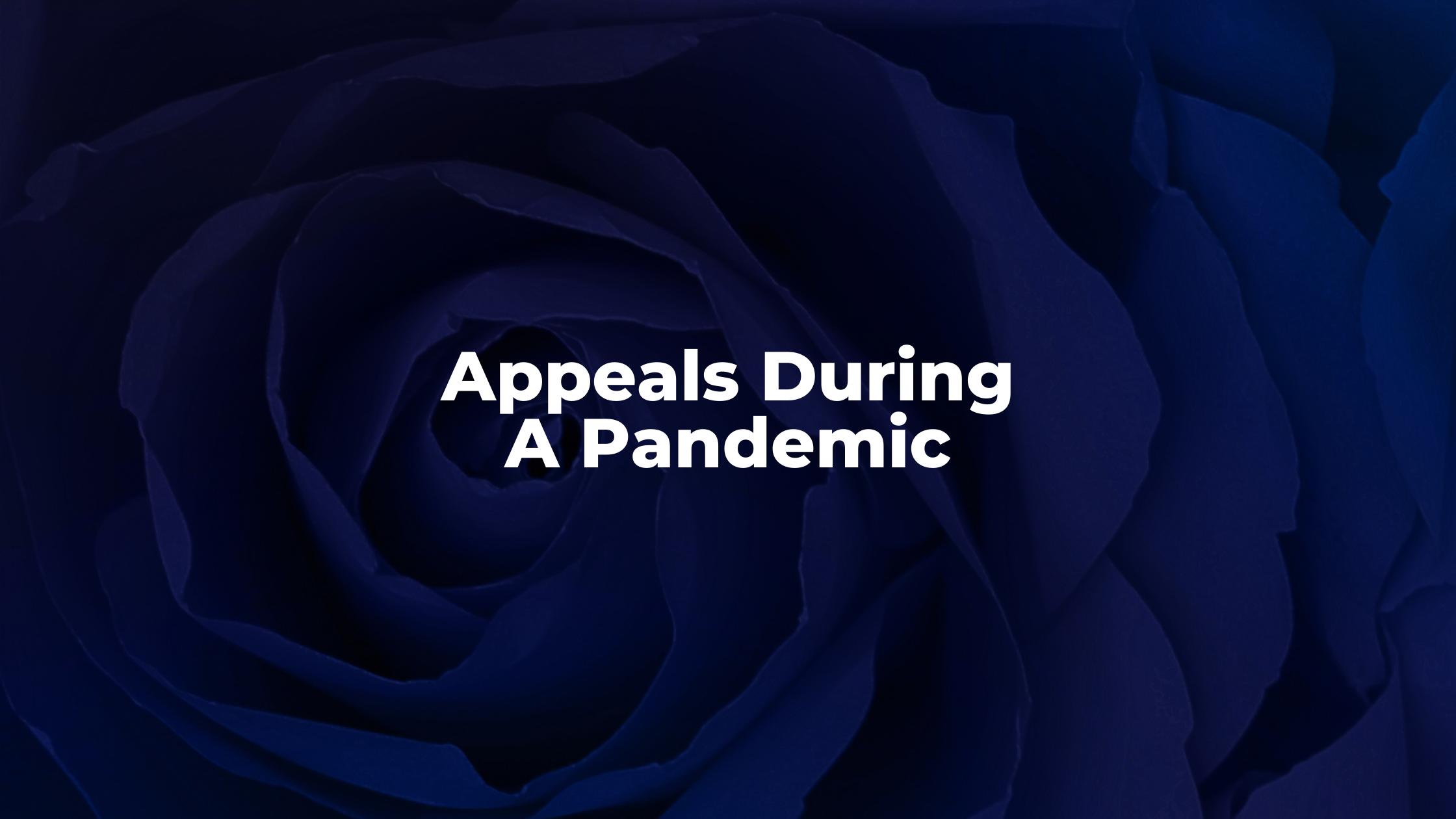 Appeals During A Pandemic