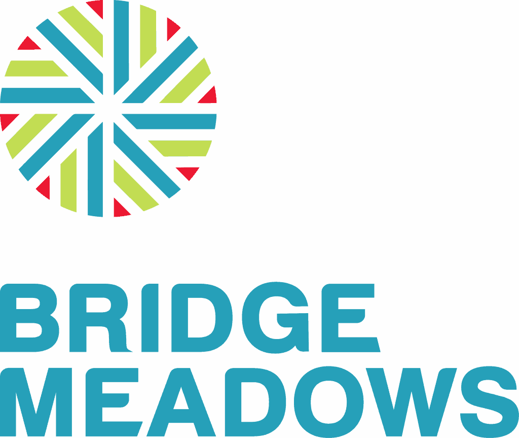 bridge meadows nonprofit